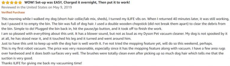 ILIFE V8s Amazon review