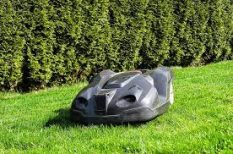 Robot Lawn Mower cutting grass