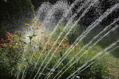 Smart-Sprinkler